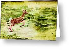 Leap Into Spring Greeting Card by Jon Van Gilder