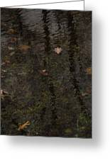 Leaves In The Waves Greeting Card by Guy Ricketts