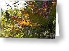 Leaves Greeting Card by Kate Brown