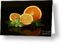 Lemon And Orange Delight Greeting Card by Inspired Nature Photography By Shelley Myke