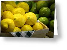 Lemons and Limes Greeting Card by Julie Palencia