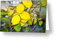 Lemons Greeting Card by Debi Starr