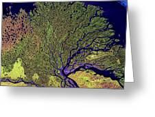 Lena River Delta Greeting Card by Adam Romanowicz