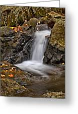 Lepetit Waterfall Greeting Card by Susan Candelario