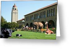 Life Down On The Farm Stanford University California Dsc685 Greeting Card by Wingsdomain Art and Photography
