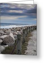 Life On The Rocks Greeting Card by Chris Brehmer Photography