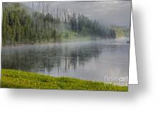 Lifting Fog On The Yellowstone River Greeting Card by Sandra Bronstein