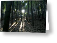 Light At The End Greeting Card by Aaron S Bedell
