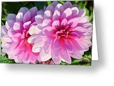 Light Shine Greeting Card by Kathleen Struckle