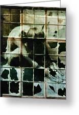 Like A Broken Window Greeting Card by Gun Legler