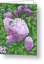 Lilacs Greeting Card by Jean Pacheco Ravinski