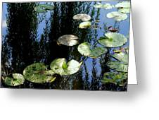 Lilly Pad Reflection Greeting Card by Frozen in Time Fine Art Photography