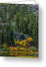 Lily Lake Autumn Greeting Card by Mitch Shindelbower
