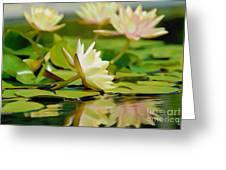 Lily Pond Greeting Card by  Fli Art