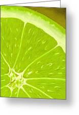 Lime Greeting Card by Anastasiya Malakhova
