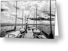 Lined Up At The Dock Greeting Card by Kathy Liebrum Bailey