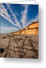 Lines Lines And Lines Greeting Card by Peter Tellone