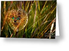 Lion In The Grass Greeting Card by Amy Cicconi