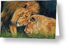 Lion  Love Greeting Card by David Stribbling
