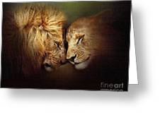 Lion Love Greeting Card by Robert Foster