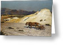 Lioness And Cubs Greeting Card by Jean Leon Gerome