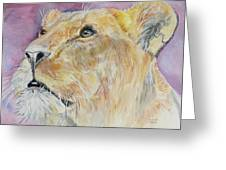 Lioness Greeting Card by Janina  Suuronen
