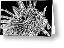 Lionfish Greeting Card by Jamie Pham