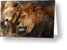 Lions In Love Greeting Card by Emmanuel Panagiotakis