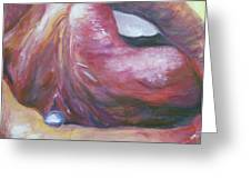 Lips Greeting Card by Nick Vogel