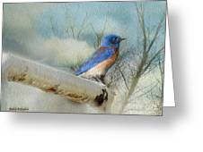 Little Blue Bird Greeting Card by Rhonda Strickland