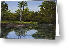 Little Chico Pond Greeting Card by Darice Machel McGuire