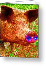 Little Miss Piggy - 2013-0108 Greeting Card by Wingsdomain Art and Photography