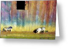 Little Piggies Greeting Card by Carl Rolfe