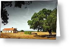 Little Rural House Greeting Card by Carlos Caetano