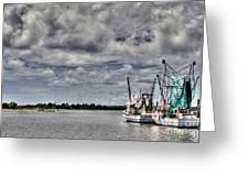 Little Shrimpers   Greeting Card by Benanne Stiens