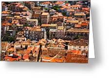 Little Village Greeting Card by Andrew Paranavitana