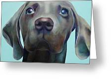 Little Weimaraner Looking Up Greeting Card by Jennifer Gibson