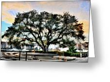 Live Oak Artistic Trendering Greeting Card by Dan Friend