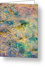 Live Water - Featured 2 Greeting Card by Alexander Senin