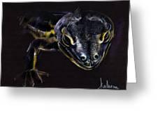 Lizard Greeting Card by Daliana Pacuraru