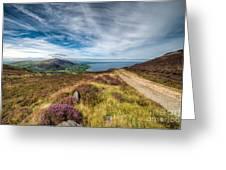 Llyn Peninsula Greeting Card by Adrian Evans
