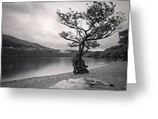 Loch Lomond Scotland Greeting Card by Colin and Linda McKie
