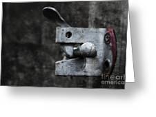 Lock Greeting Card by Svetlana Sewell