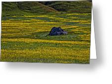 Lone Stone Greeting Card by Garry Gay
