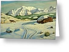 Lone Tracker Greeting Card by Paul Krapf