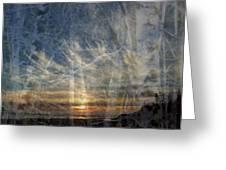 Long Beach Alders Greeting Card by Lyn  Perry