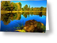 Looking Across The Pond Greeting Card by David Simons