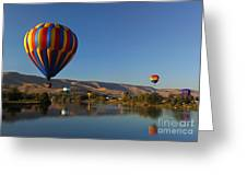 Looking For A Place To Land Greeting Card by Mike  Dawson