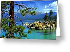 Looking North Greeting Card by Lynn Bawden