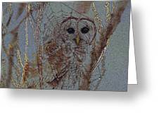 Looking Through The Web Greeting Card by J Larry Walker